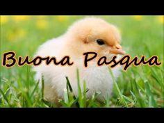 Auguri di Buona Pasqua - YouTube