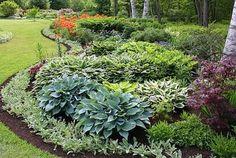 Garden With Flower Bed Using Hostas : Hosta Outdoor Plants For Your Garden