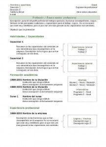 Currículum Vitae: Modelo Combinado 2