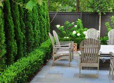 Ideas For Backyard Privacy Landscaping Plants Yards Small Courtyard Gardens, Courtyard Design, Small Courtyards, Outdoor Gardens, Courtyard Ideas, Small Garden Terrace Ideas, Narrow Patio Ideas, Modern Courtyard, Courtyard House