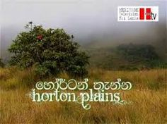 Image result for horton place picture sri lanka Sri Lanka, Places, Pictures, Image, Photos, Grimm, Lugares