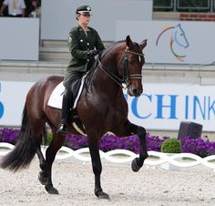 Luíza  Tavares de Almeida on Pastor, the horse she competed at the Olympics in London last summer. ©Ken Braddick/dressage-news.com