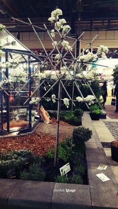 Puutarhamessut Helsingissä 2019 Christmas Tree, Lifestyle, Holiday Decor, Garden, Plants, Home Decor, Teal Christmas Tree, Garten, Decoration Home