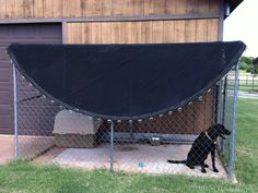 Kennel Cover - recycle a used trampoline mat as a kennel shade ~ perfect!---could just keep the mat too to cover part the petting zoo for shade? Recycled Trampoline, Old Trampoline, Backyard Trampoline, Trampoline Ideas, Backyard Toys, Trampolines, Professional Trampoline, Dog Pen, Play Yard