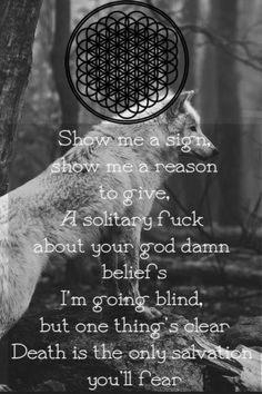 .:.:.:.:.:.Bring Me The Horizon.:.:.:.:.:., the house of wolves iiiiiiiiih i l love this song so MUCH