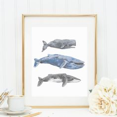 Whale Prints, Blue Whale, Fin Whale, Sperm Whale, Painted Whales, Whale Wall Art, Printable Art, Digital Print, Instant Download, Wall Decor on Etsy, Prints by Jetty Home