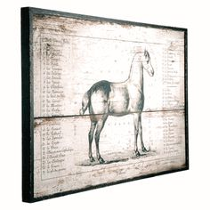 Barreveld Wood Panel Paint Horse Breed Stand 81939