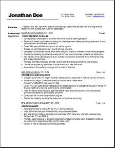 vp sales example resume