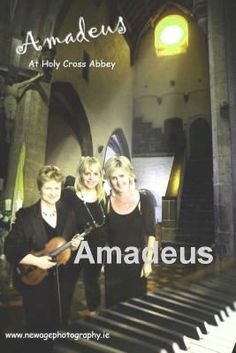 Amadeus Irish Wedding Singers Tipperary Offaly Carlow Kilkenny In Ireland