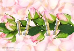 Athens Greece, Studio Shoot, Jewelry Photography, Plants, Jewellery, Jewels, Schmuck, Plant, Jewelry Shop