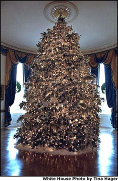 77 Great Xmas Trees The White House Images White House Christmas