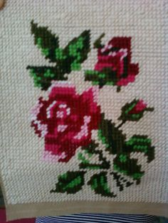 Kis rózsa