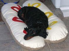 Dachshund Sweaters by WarmWeenies, Handmade to Fit: Found Treasure - Dachshund Small Dog Bun Bed