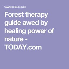 Forest therapy guide awed by healing power of nature - TODAY.com