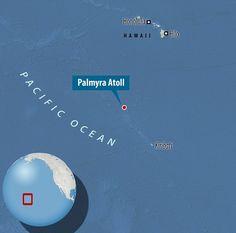 Palmyra Atoll is a 5 square mile (8 square kilometre) ring of coral half way between Hawai...