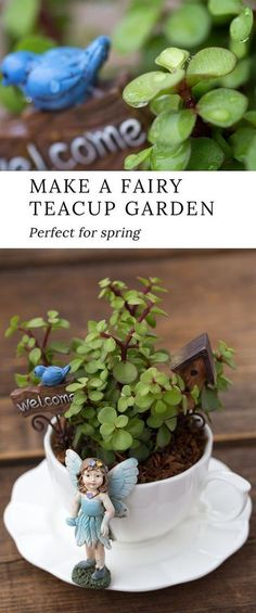 Learn how to make a magical teacup fairy garden for your home. Teacup fairy gardens are an adorable Mother's Day gift, are the perfect craft for fairy-themed birthday parties, and look especially sweet displayed in a sunny window. Fairy Crafts, Garden Crafts, Garden Projects, Garden Fun, Bird House Kits, Fairy Garden Houses, Fairy Doors, Miniature Fairy Gardens, Garden Planning