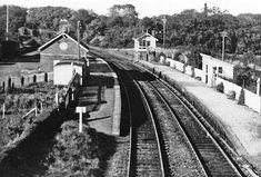 Disused Stations, Edward Snowden, Belfast, Railroad Tracks, Walks, Abandoned, Trains, Ireland, Irish