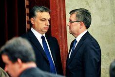 Ez még a Fidesz szavazóinak is sok: Elég volt a pénzszórásból! A Fidesz szavazók kezdenek ébredezni Csipke Rózsika álmukból!