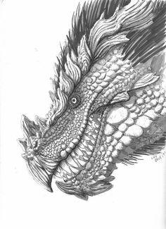 Gratis Kleurplaten Draken.90 Beste Afbeeldingen Over Kleurplaten Draken Dragon Head