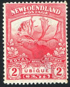 code qr | Editorial image of '- CIRCA 1919: stamp printed by Newfoundland, shows ...