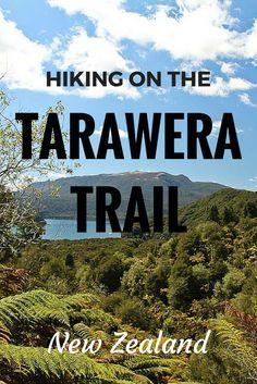 If you're visiting New Zealand, take a day to hike the fantastic Tarawera Trail near Rotorua. It has gorgeous lake and bush views and even a hot spring!