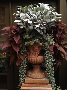Dusty miller, sedum, purple sweet potato vine, and that silver vine - love the combo