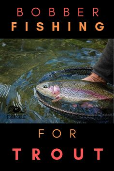 The Ultimate Guide To Using Fishing Floats - Trout fishing with. The Ultimate Guide To Using Fishing Floats - Trout fishing with a bobber is an exciting way to fish f Usa Fishing, Fishing Rigs, Walleye Fishing, Sport Fishing, Fishing Bait, Fishing Humor, Gone Fishing, Carp Fishing, Fishing Bobbers
