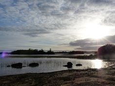 Co. Galway: Lough Cutra.