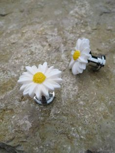Petite Drawer knobs with White Daisy Flower for small by DaRosa, $4.50
