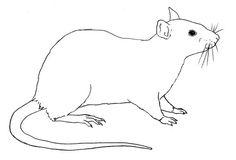 Ausmalbilder Malvorlagen Ratte Kostenlos Zum Ausdrucken Marchen Aus Aller Welt Der Bruder Grimm Von Andersen Online Le Ausmalbilder Ausmalen Ausdrucken