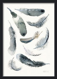 Black and white | Feather art print - 9 soaring downs and feathers | Art print black and white feather watercolor painting by Annemette Klit - Quality Art Print from TheClayPlay - Feather art work - from original watercolor painting - Bird feather art print - hand painted watercolor - Modern art from The Clay Play - Black & white artwork. Home decor - Children room - Poster - Painting - Aquarelle - Present - Gift Watercolor in black, white and grey with a tiny hint of brown. No. 476  Prof...