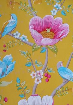 Chinese Garden Yellow 341006 - Seinäruusu - Verkkokauppa