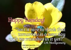8 Best Happy Tuesday Morning Images Good Morning Wishes Quotes
