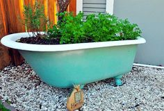 Bay Friendly Landscaping