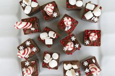 Hot Chocolate Cubes