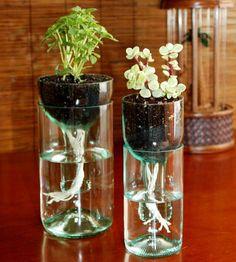 Tu Organizas.: 20 ideias charmosas para reutilizar garrafas de vidro