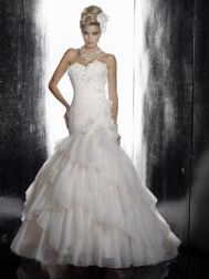 Christina Wu Wedding Dresses - Style 15485 beautiful bodice and detail