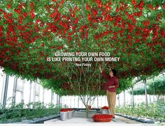"""Growing your own food is like printing your own money.""- Ron Finley"