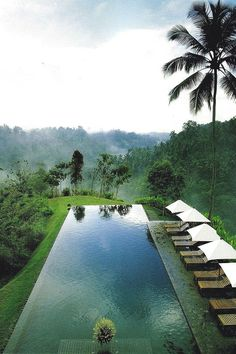 This is the pool at the Alila in Ubud. When you swim in it, the infinity edge makes it look like this pool falls right off into the gorge and river below.