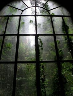 I am resting in a abandoned mansion. I see the moonlit mist in the forest. I hear the sound of wolves howling. I fall asleep watching the misty forest through a large window. Bohemian House, Dark Bohemian, The Secret Garden, Secret Gardens, Slytherin Aesthetic, Nature Aesthetic, Aesthetic Dark, Aesthetic Pastel, Home Photo
