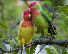 MADE TO ORDER needle felted lovebird, felt parrot, bird sculpture, pet portrait, gift for lovers, for couple, love, soft toy bird