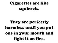 If it makes me laugh out loud, I gotta re-pin!  The mental picture of the squirrel is killing me!