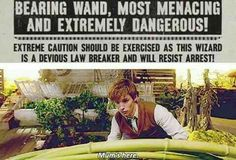 Newt scamander mums here Harry Potter Books, Harry Potter Universal, Harry Potter Fandom, Harry Potter Memes, Harry Potter World, Fandoms Unite, Hogwarts, Yer A Wizard Harry, Fantastic Beasts And Where