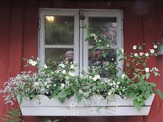 Norwegian House, Picnic Time, Container Plants, Flower Beds, Scandinavian Style, Garden Inspiration, Outdoor Living, New Homes, Exterior