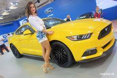 Car Expo, Bratislava, Mustangs, Car Show, Cars, Autos, Car, Automobile, Mustang