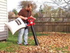 Leaf Blower, Amazing Gardens, Outdoor Power Equipment, Leaves, Garden Tools