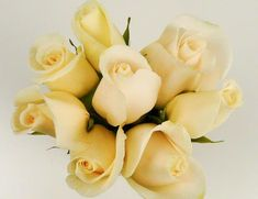 White Roses order for pickup at Costco Stores (not online). Much better selection of variety of flowers available.
