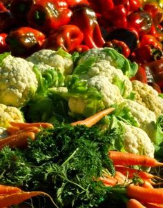 Vegetable Gardening For Beginners, 6 Easy Tips To Start You Off - Abundant vegetable gardens start with healthy, rich soil. Compost and mulch contribute to that natural wealth.