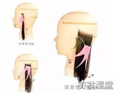 二分區技術之學習美髮要了解的技術知識|Zi 字媒體 Lipstick, Beauty, Lipsticks, Beauty Illustration