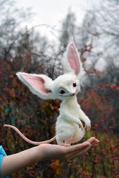 Imp - Hobbies paining body for kids and adult Cute Fantasy Creatures, Cute Creatures, Magical Creatures, Baby Animals, Cute Animals, Fluffy Cows, Mystical Animals, O Pokemon, Fantastic Beasts